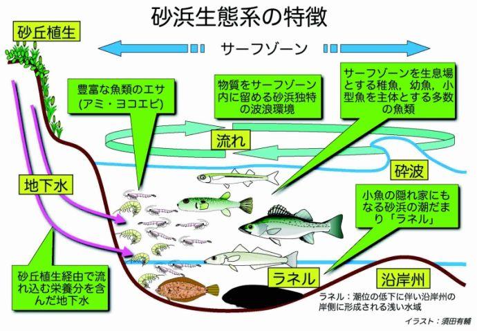 なぜ日本の水産資源は減少するのか?各地で消えるサカナ達 %e9%a3%9f%e3%83%bb%e5%97%9c%e5%a5%bd%e5%93%81 %e6%b6%88%e8%b2%bb %e6%97%a5%e6%9c%ac%e3%81%ae%e9%87%8c%e5%b1%b1 %e6%94%bf%e7%ad%96%e3%83%bb%e7%9c%81%e5%ba%81 %e4%b8%80%e6%ac%a1%e7%94%a3%e6%a5%ad %e3%82%b5%e3%82%a4%e3%82%a8%e3%83%b3%e3%82%b9 soho%e3%83%bb%e8%87%aa%e5%96%b6 domestic health politics economy