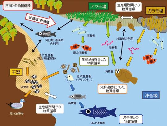 なぜ日本の水産資源は減少するのか?各地で消えるサカナ達シラス、ノレソレ、ウナギ、マイワシ、カレイ、アイナメ、ハゼ川と砂浜、健康な山林を取り戻せ %e9%a3%9f%e3%83%bb%e5%97%9c%e5%a5%bd%e5%93%81 economy health %e6%b6%88%e8%b2%bb %e6%97%a5%e6%9c%ac%e3%81%ae%e9%87%8c%e5%b1%b1 %e6%94%bf%e7%ad%96%e3%83%bb%e7%9c%81%e5%ba%81 politics domestic %e4%b8%80%e6%ac%a1%e7%94%a3%e6%a5%ad %e3%82%b5%e3%82%a4%e3%82%a8%e3%83%b3%e3%82%b9 soho%e3%83%bb%e8%87%aa%e5%96%b6