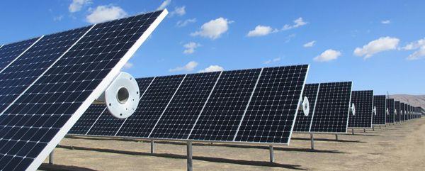立木権と境界どうする不動産トラブル?太陽光発電所を営む男性「太陽光パネルが日陰になるから」松の根にドリルで穴あけ除草剤 %e9%9a%a3%e4%ba%ba%e3%83%88%e3%83%a9%e3%83%96%e3%83%ab %e6%97%a5%e6%9c%ac%e3%81%ae%e9%87%8c%e5%b1%b1 %e4%bd%8f%e5%b1%85 %e3%83%a2%e3%83%a9%e3%83%ab%e3%83%8f%e3%82%b6%e3%83%bc%e3%83%89 domestic health economy