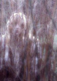 霊能力者 「これは心霊写真ですね。放っておくと命を失います」夏の夜長に心霊写真断食と霊感の秘密 %e3%82%b5%e3%82%a4%e3%82%a8%e3%83%b3%e3%82%b9 domestic health