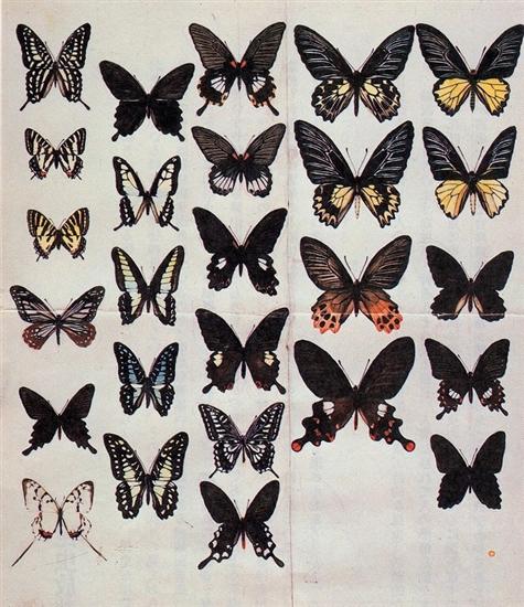 話題の昆虫イラスト集「昆虫交尾図鑑」にトレース疑惑? トレースや模写の何が悪いのか意味がわからない。 %e9%a3%9f%e3%83%bb%e5%97%9c%e5%a5%bd%e5%93%81 %e6%98%a0%e7%94%bb %e3%82%b5%e3%82%a4%e3%82%a8%e3%83%b3%e3%82%b9 %e3%82%b3%e3%83%9f%e3%83%83%e3%82%af%e3%83%bb%e3%82%a2%e3%83%8b%e3%83%a1 %e3%81%84%e3%81%98%e3%82%81%e3%83%bb%e5%ad%a6%e6%a0%a1%e3%83%88%e3%83%a9%e3%83%96%e3%83%ab soho%e3%83%bb%e8%87%aa%e5%96%b6 jiken health economy